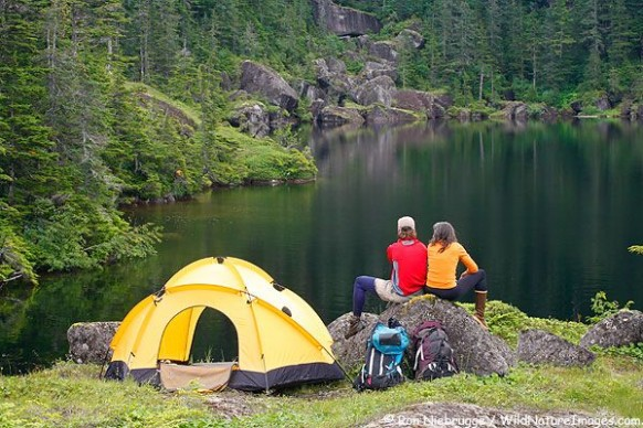 Food Ideas for The Perfect Camping Trip